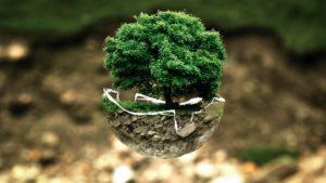 Des banques plus écologiques ? par Crédit Partenaire Habitat